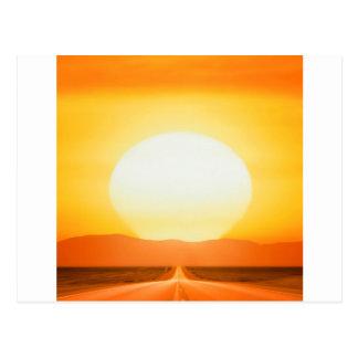 Sunset Savage Postcard
