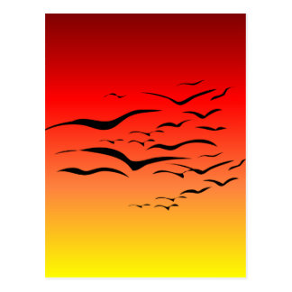 Sunset Sea Gulls Postcard