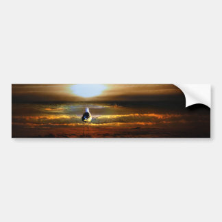 Sunset Seagull Bumper Sticker