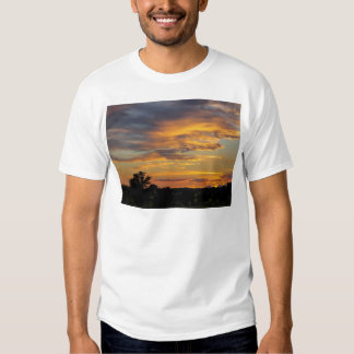 sunset shirts
