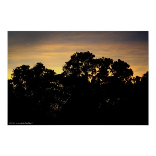 Sunset Silhouette Trees photo print