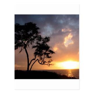 Sunset Sinking Postcard