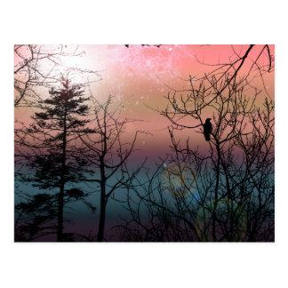 Sunset Solitude Gothic Landscape Fantasy Postcard