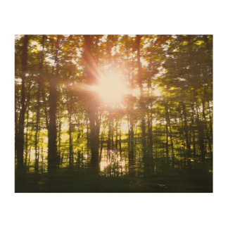 Sunset Speeding By Wood Wall Decor