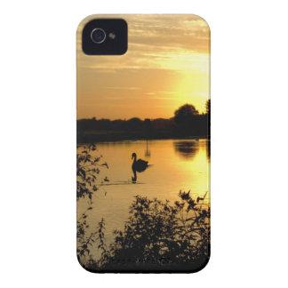 Sunset Swan Lake orange yellow Case-Mate iPhone 4 Case