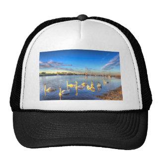 Sunset Swans Mesh Hat