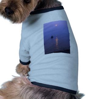 Sunset Swim Ringer Dog Shirt