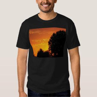 sunset tee shirts