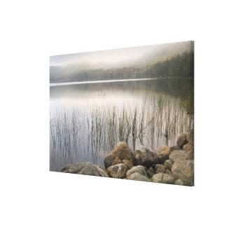 Sunset through fog over Upper Hadlock Pond Stretched Canvas Print