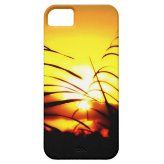 Sunset through the Palm Trees Barely There iPhone 5 Case