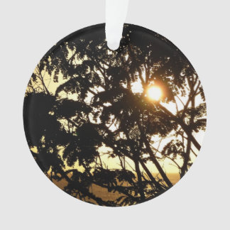 Sunset Through Trees I Tropical Photography