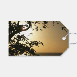 Sunset Through Trees II Tropical Photography Gift Tags