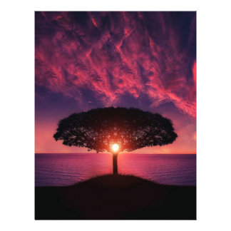 "Sunset Tree 8.5"" X 11"" Flyer"