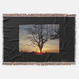 Sunset tree shiloette throw