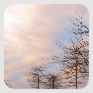 SUNSET TREES IN WINTER STICKERS