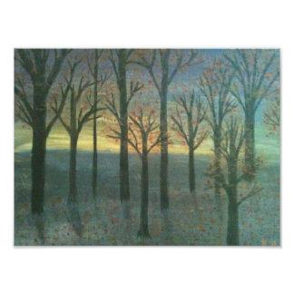 Sunset trees art photo