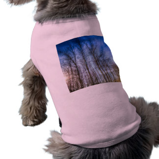 Sunset Trees Shirt