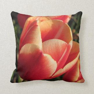 Sunset Tulip Cushion