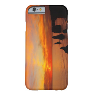Sunset, Twelve Apostles, Port Campbell National Barely There iPhone 6 Case