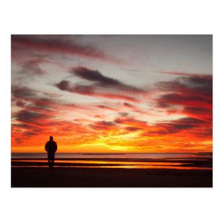 Sunset Walk Postcard