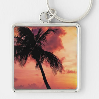Sunset with Palm Key Chain
