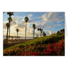 Sunset with Palm trees and Borgenvillia Card