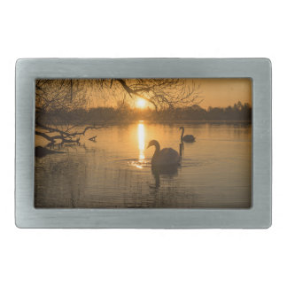 Sunset with Swan Belt Buckles