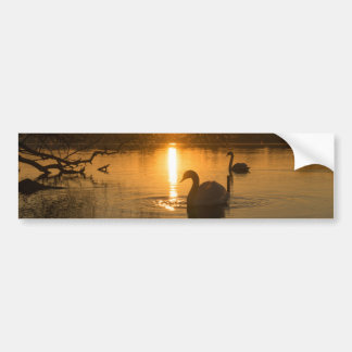Sunset with Swan Bumper Sticker