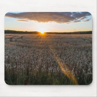 Sunsets field mouse pad