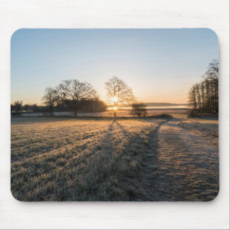 Sunsets tree mouse pad
