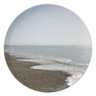 Sunshine and beach plate