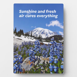 Sunshine and Fresh Air Plaque