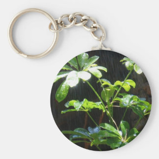 Sunshine and Showers gran canaria Key Ring