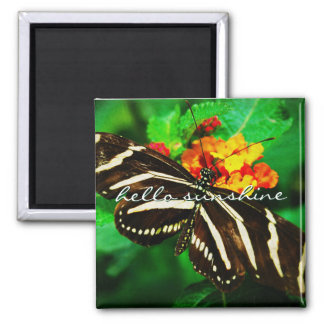"""Sunshine"" black & white butterfly photo magnet"