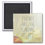 Sunshine & Friendship Square Magnet