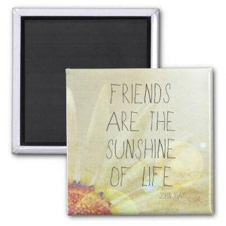 Sunshine & Friendship Square Magnet