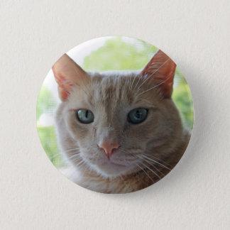 Sunshine Kitty 6 Cm Round Badge