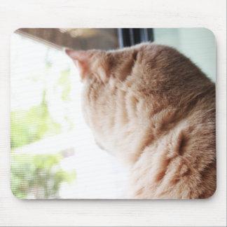 Sunshine Kitty Mouse Pads