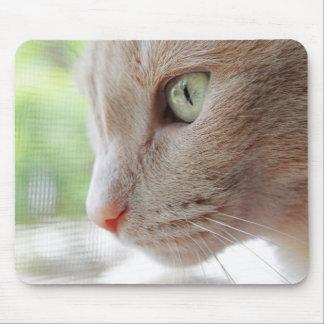 Sunshine Kitty Mousepad