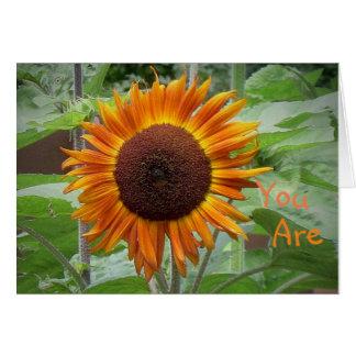 Sunshine Of My Life Sunflower Greeting Card