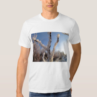 Sunshine on Frost Crystals T Shirts
