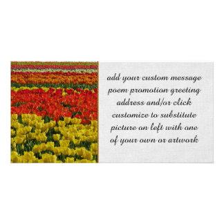 Sunshine Rainbow Tulips Personalized Photo Card