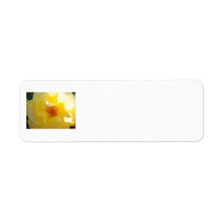 Sunshine Rose Address Label
