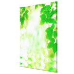 Sunshine through leaves, close-up stretched canvas prints
