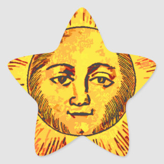Suntastic Star Sticker