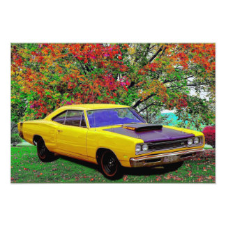 Super Bee Photograph