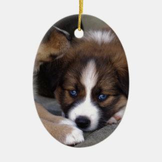 Super Cute Australian Shepherd Puppy Christmas Ornament