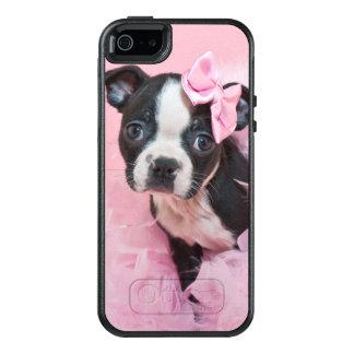 Super Cute Boston Terrier Puppy Wearing A Boa OtterBox iPhone 5/5s/SE Case