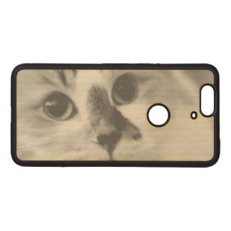 SUPER CUTE Cat Closeup Portrait Photograph Wood Nexus 6P Case