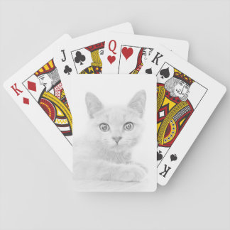 SUPER CUTE Cat Playing Cards